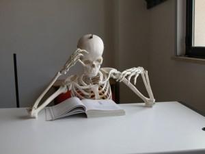 studiare-scheletro[1]